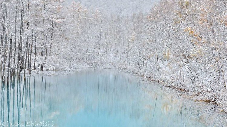 برکه آبی؛ جایی که سکوت جریان دارد