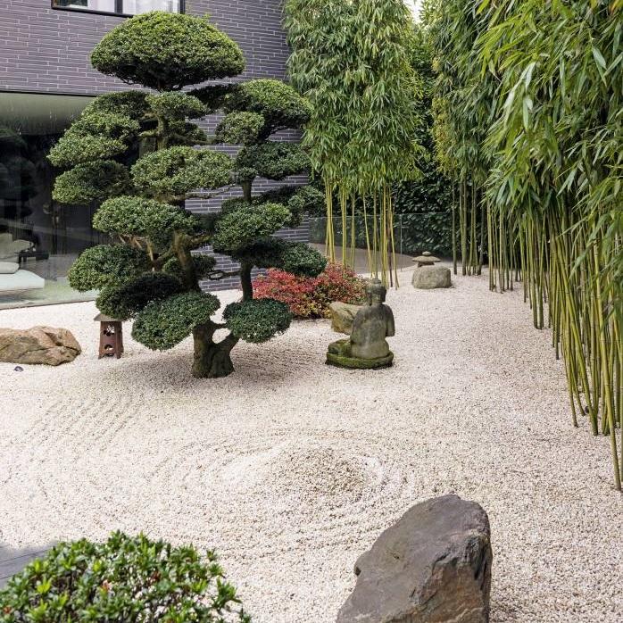 باغچه ژاپنی